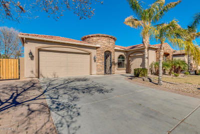 Chandler Single Family Home For Sale: 3130 E Lynx Place