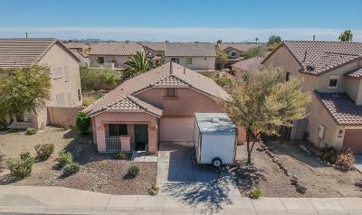 Maricopa Single Family Home For Sale: 21009 N Jocelyn Lane
