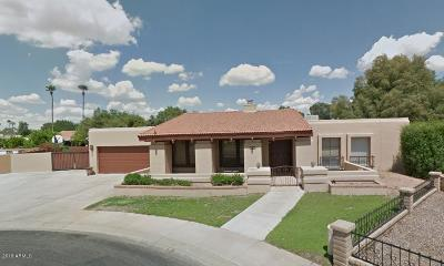 Maricopa County Single Family Home For Sale: 1910 W Natal Circle