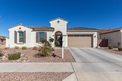 Queen Creek Single Family Home For Sale: 20701 S 196th Street