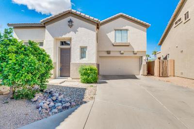 Palm Valley Single Family Home For Sale: 14369 W Lexington Avenue