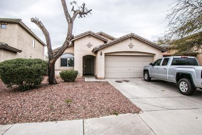 Avondale Single Family Home For Sale: 2517 S 109th Drive