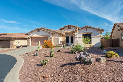 Gold Canyon Single Family Home For Sale: 8241 S Rocky Peak Court
