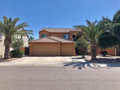 Chandler Single Family Home For Sale: 1043 W Wildhorse Drive