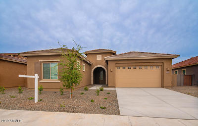 Queen Creek Single Family Home For Sale: 21528 E Pecan Court