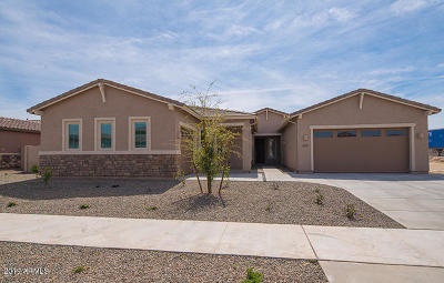 Queen Creek Single Family Home For Sale: 21465 E Misty Lane