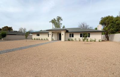 Phoenix Single Family Home For Sale: 334 W Bethany Home Road