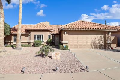 Sun City Single Family Home For Sale: 11038 W Runion Drive