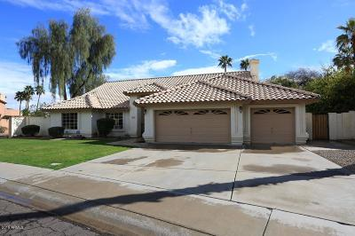 Scottsdale Single Family Home For Sale: 8995 E Larkspur Drive
