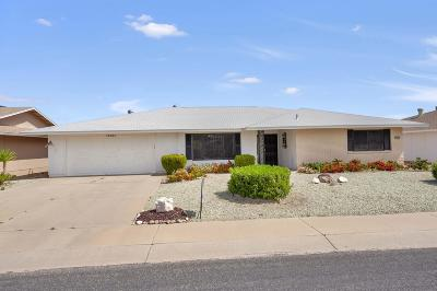 Sun City West Single Family Home For Sale: 13234 W Desert Glen Drive