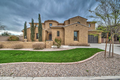 Queen Creek Single Family Home For Sale: 20297 E Poco Calle