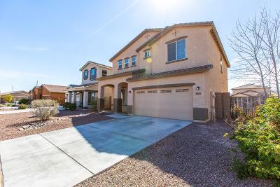 Queen Creek Rental For Rent: 1613 W Desert Spring Way