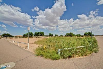 Mesa Residential Lots & Land For Sale: 6862 E El Porton Avenue
