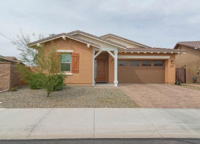 Gilbert Single Family Home For Sale: 3864 E Ficus Way