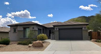 Peoria Single Family Home For Sale: 8357 W Staghorn Road