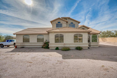 Apache Junction Single Family Home For Sale: 480 S Roadrunner Road