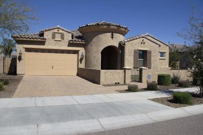 Queen Creek Single Family Home For Sale: 20118 E Quintero Road E