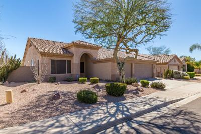 Chandler Single Family Home For Sale: 273 N Danielson Way