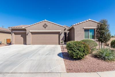 Maricopa Single Family Home For Sale: 20167 N Winter Escape Court