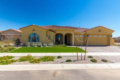 Mesa Single Family Home For Sale: 4317 S Binary Circle
