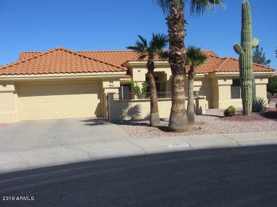 Sun City West AZ Single Family Home For Sale: $315,000