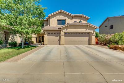 Maricopa Single Family Home For Sale: 44568 W High Desert Trail