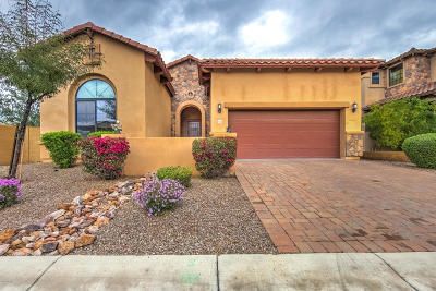 Mesa AZ Single Family Home For Sale: $490,000