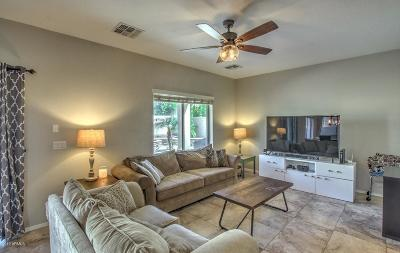 Surprise Single Family Home For Sale: 16170 W Christy Drive