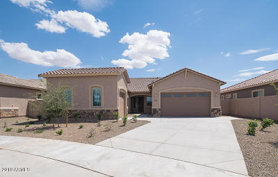 Queen Creek Single Family Home For Sale: 21467 E Sunset Drive