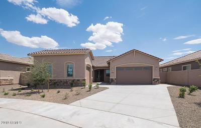Queen Creek AZ Single Family Home For Sale: $408,990