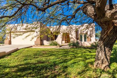 New River Single Family Home For Sale: 4143 W Devil Springs Road