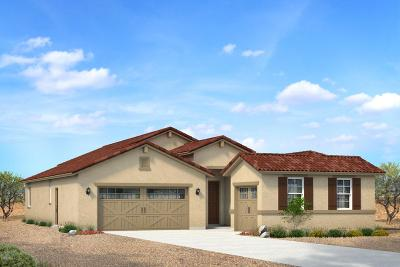 Maricopa Single Family Home For Sale: 37533 W Giallo Lane