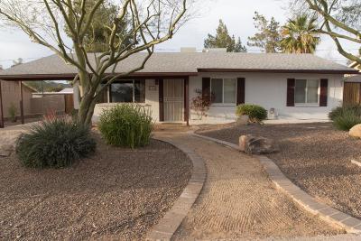 Phoenix Single Family Home For Sale: 1308 E Ruth Avenue
