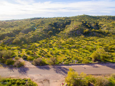 Residential Lots & Land For Sale: 12240 N Goldfield Road