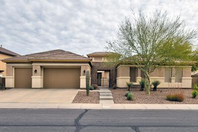 Phoenix Single Family Home For Sale: 40511 N Copper Basin Trail