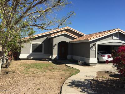 Phoenix Single Family Home For Sale: 220 W Vineyard Road