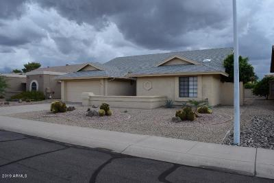 Maricopa County Single Family Home For Sale: 9815 W Rosemonte Drive