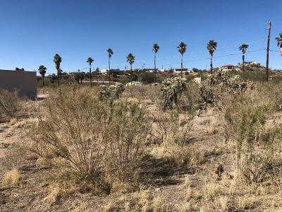 Residential Lots & Land For Sale: 1568 E Queen Valley Drive