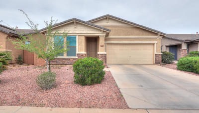 Maricopa Single Family Home For Sale: 40800 W Rio Grande Drive