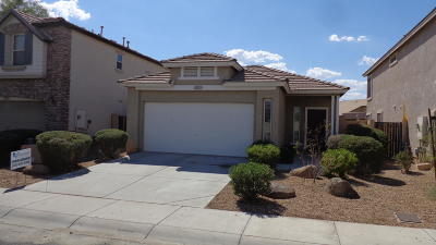 Litchfield Park Single Family Home For Sale: 6034 N Florence Avenue