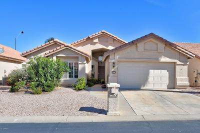 Maricopa County Single Family Home For Sale: 15114 W Vale Drive