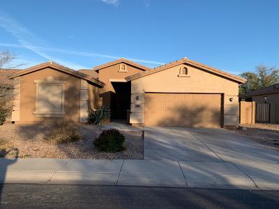 Casa Grande Single Family Home For Sale: 2521 E Dulcinea Trail
