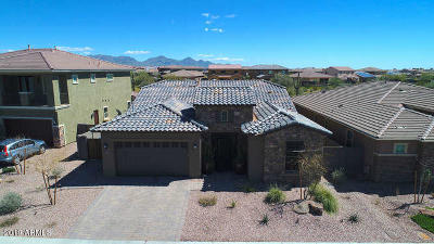 Scottsdale, Paradise Valley, Phoenix, Chandler, Tempe, Gilbert, Mesa Single Family Home For Sale: 23209 N 44th Place