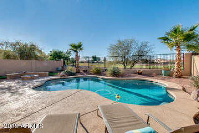 San Tan Valley Rental For Rent: 668 E Taylor Trail