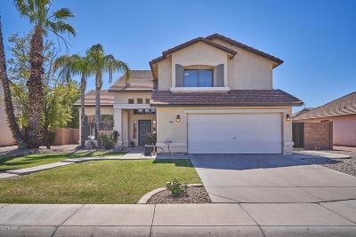 Scottsdale, Paradise Valley, Phoenix, Chandler, Tempe, Gilbert, Mesa Single Family Home For Sale: 1095 E Del Rio Street