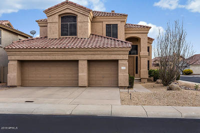 Cave Creek Single Family Home For Sale: 4227 E Desert Marigold Drive