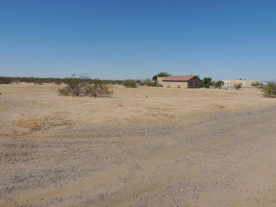 Goodyear Residential Lots & Land For Sale: S 171 Drive