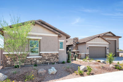 Cave Creek Single Family Home For Sale: 31420 N 41st Place