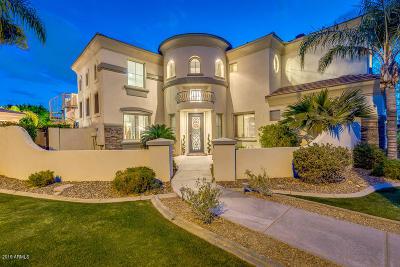 Mesa AZ Single Family Home For Sale: $979,000