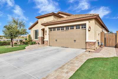 Chandler Single Family Home For Sale: 3011 S Sunland Drive